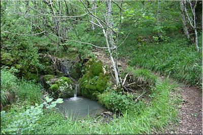 Pequeña cascada antes de superar el barranco
