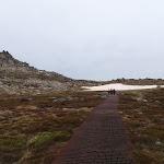 following the walkway (84886)