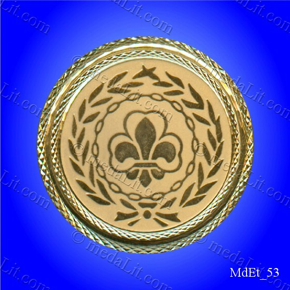 Scouting / كشافة Gold-plated medal