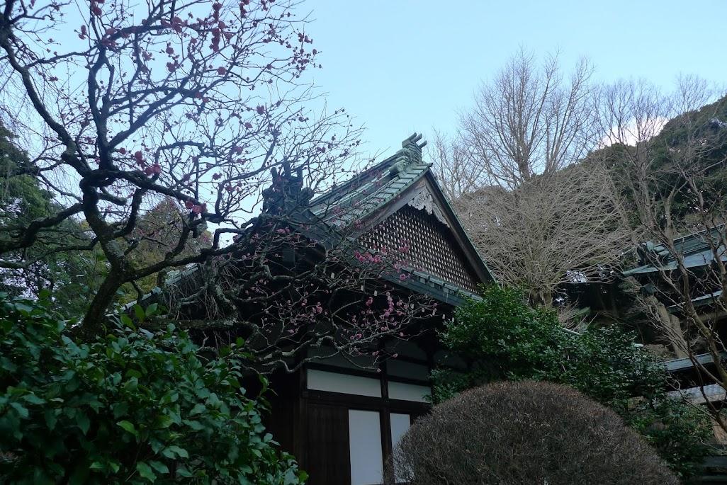 temple hakone