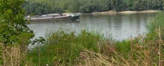Wenig Schifffahrt auf der Donau