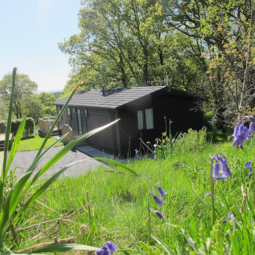 Camping  at High Bracken Holiday Homes