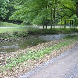 Helvetia Trail Run 2003