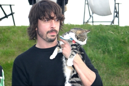Dave Grohl and a cat