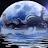 Kahukura Barclay avatar image