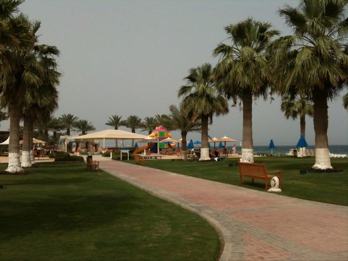 رحلة الى دولة قطر