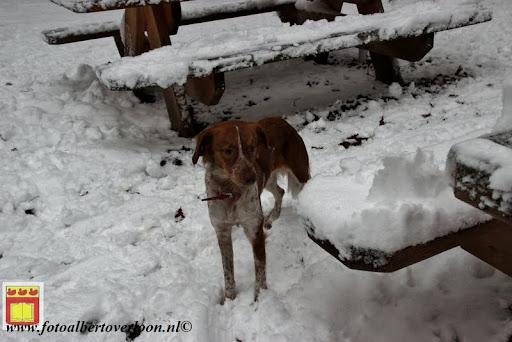 eerste sneeuwval in overloon 07-12-2012  (46).JPG
