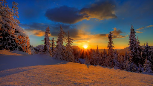 Winter Sunset, Mount Rainier National Park, Washington.jpg