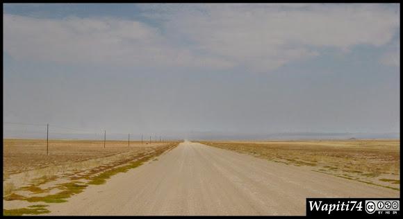 Balade australe... 11 jours en Namibie IMG_0618