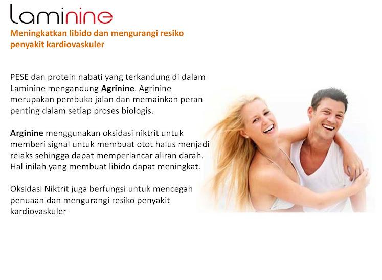 produk laminine Page 48 Nutrisi Herbal Untuk Menormalkan Gula Darah