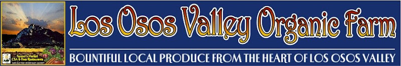Los Osos Valley Organic Farm News