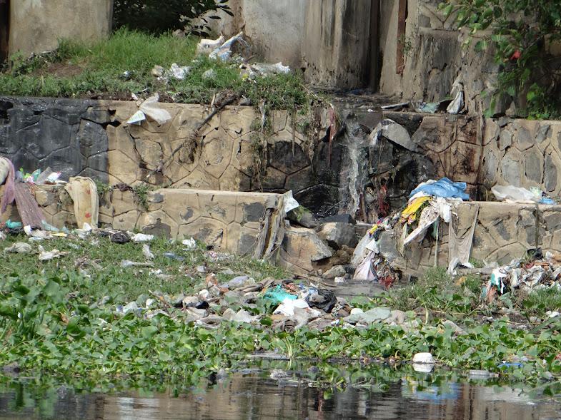 Untreated Sewage water in Ekkatuthangal, Adyar River