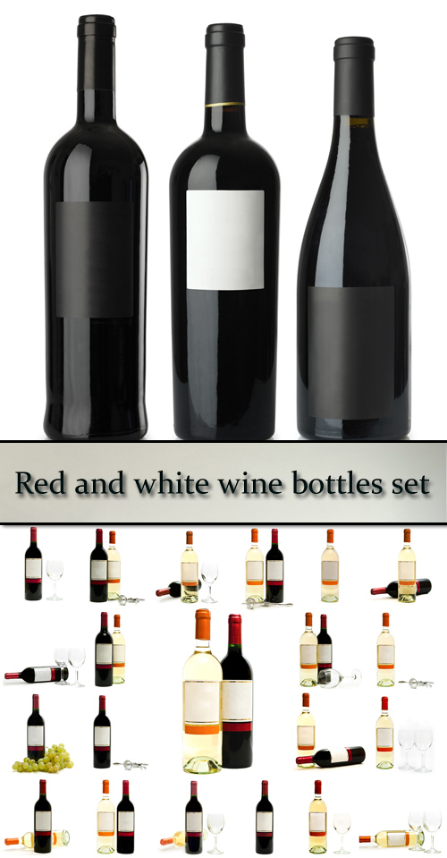 Stock Photo: Red and white wine bottles set