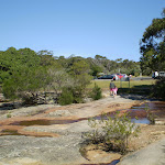 Wattamolla path north of carpark (31102)