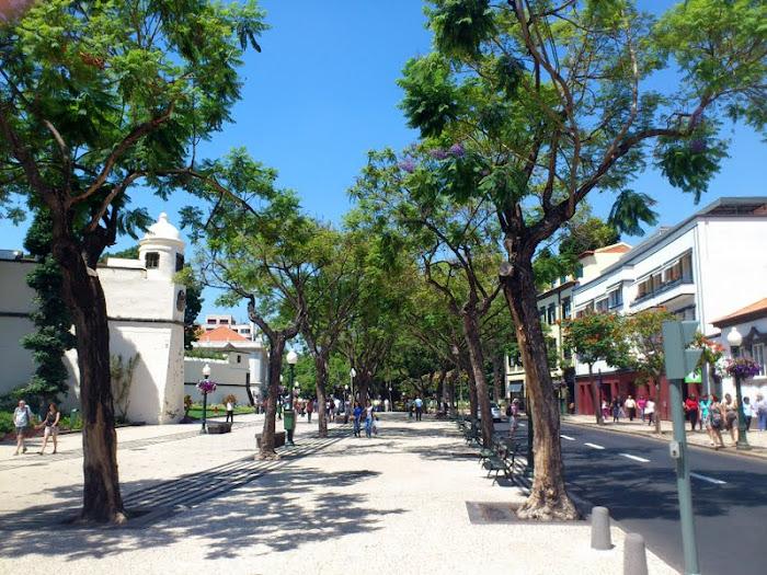 a long way to walk in Avenida Arriaga