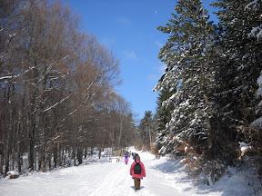 Izvještaj sa svetosavkog uspona na Juhor (744m)-29.01.2011