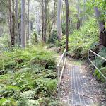 Metal footbridge (200713)