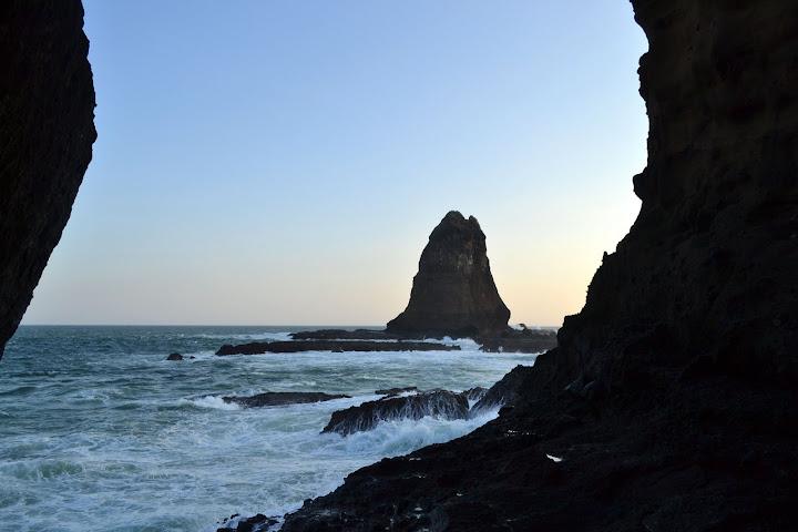 karang papuma