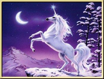 unicorn%252520%25252821%252529.jpg