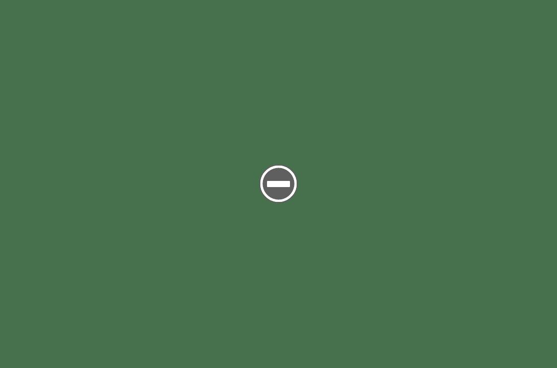 BSB Rubberset 400 du Dr Dulcamara IMG_1916%2B%28Custom%29