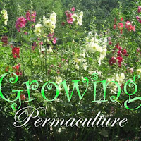 Gro Permaculture