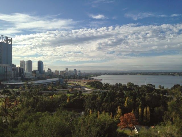 View of Perth city in Kings Park