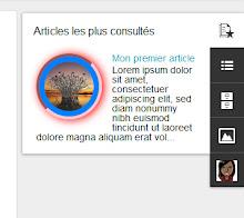 Vignette des articles dans le gadget Articles les plus consultés - Modèle dynamique