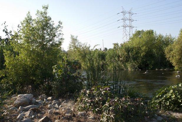 Los Angeles River in Elysian Valley