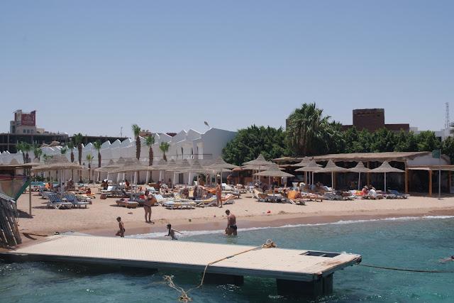 فى مصر الرجل تدب مكان ماتحب ( خاص من أمواج ) 100605-120302-f