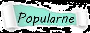 Popularne posty