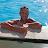 Tins 74 avatar image