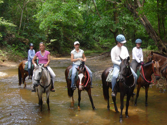 Nandamojo Horseback Ride - ROW Eco Tour