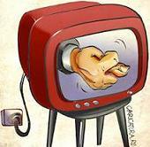 Фото - Общественного телевидения не будет