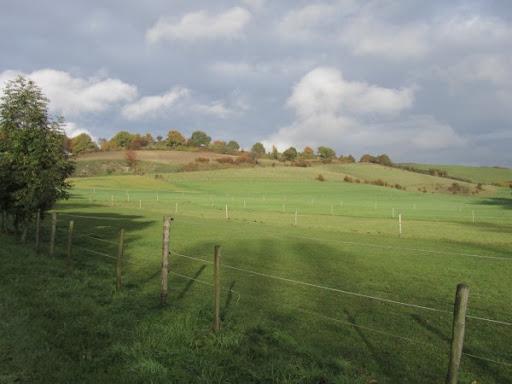 Nuit de Bocholtz(NL): 100/110km: 28-29/10/2011 2010-10-29_Noad%252520Bocholtz%252520110%252520km%252520070