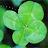 Yongxin Wang avatar image