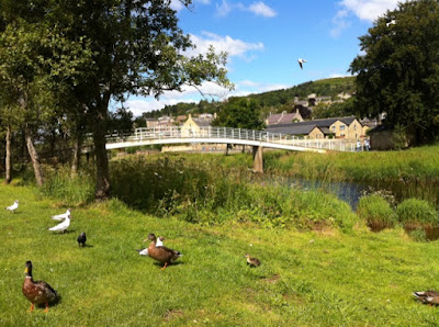 Picnic Areas in Rothbury next to the River Coquet