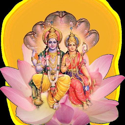 Narayan <b>Shakti Peeth</b>