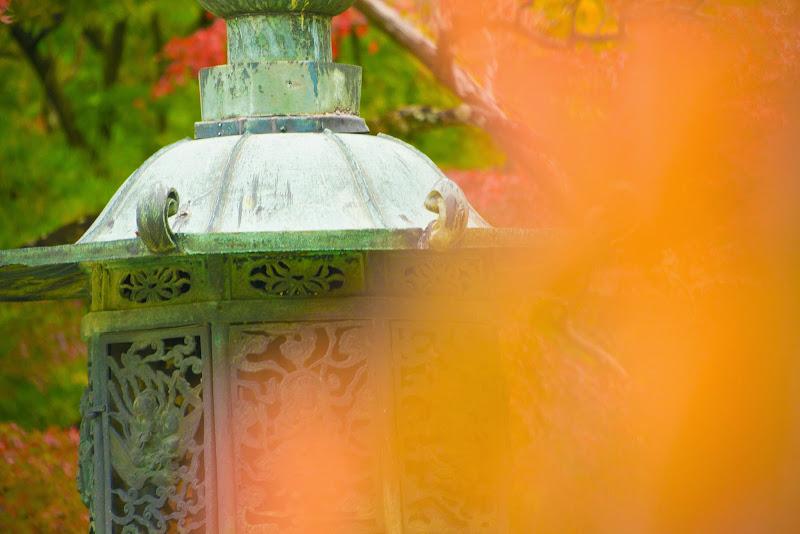 京都 紅葉 仁和寺 写真4