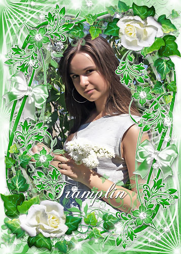 Рамка для Photoshop – Белые розы, завитушки, бантики