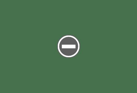 Piata Maidan Kiev Viktor Ianukovici, preşedintele comunist al Ucrainei a fost prins !