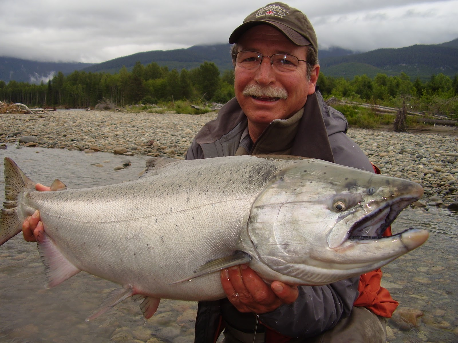 how to catch chinook salmon in rivers