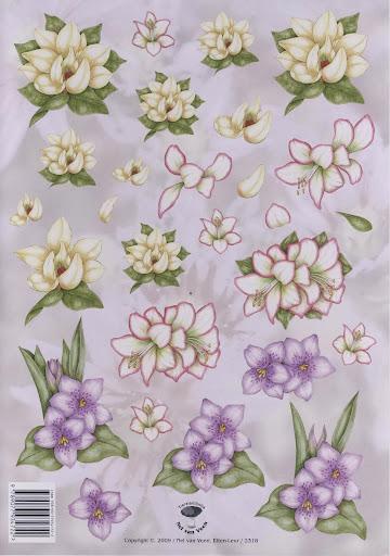2318 Nel v.Veen bloemen.jpg