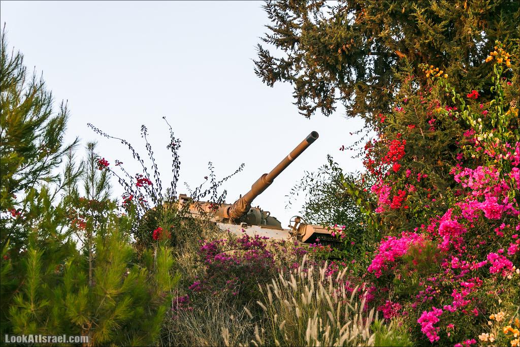LookAtIsrael.com: Злободневное рифмованное (israel  шарон и шфела ха ха разное армия )