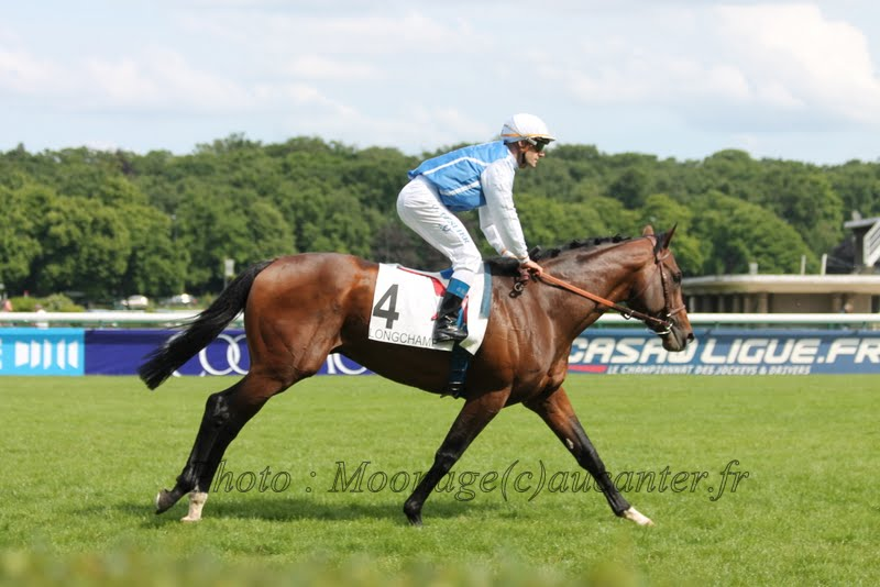 Photos Longchamp 25-05-2014 IMG_1337