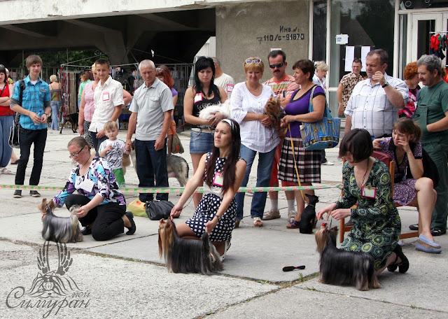 18-19 июня 2011г. Беларусь (2хСАС) - Смоленск CACIB (фотоотчёт) 41