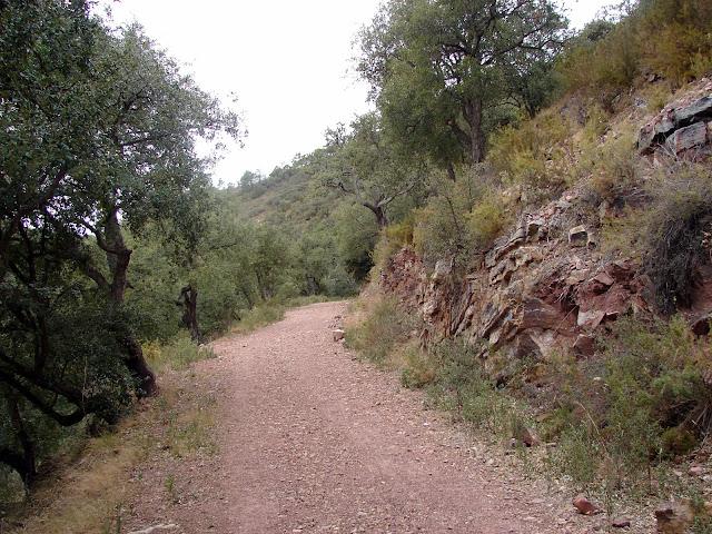 Senderismo Alfondeguilla - Castillo de Castro - Nevera - Bco Alfondegiulla