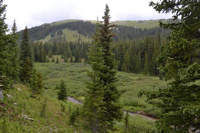 Meadow Creek flowing through a meadow