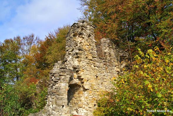 Góra Sobień, bieszczadzkie rezerwaty, wycieczki po Bieszczadach,