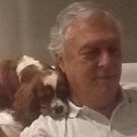Profile picture of Nelson_Costa
