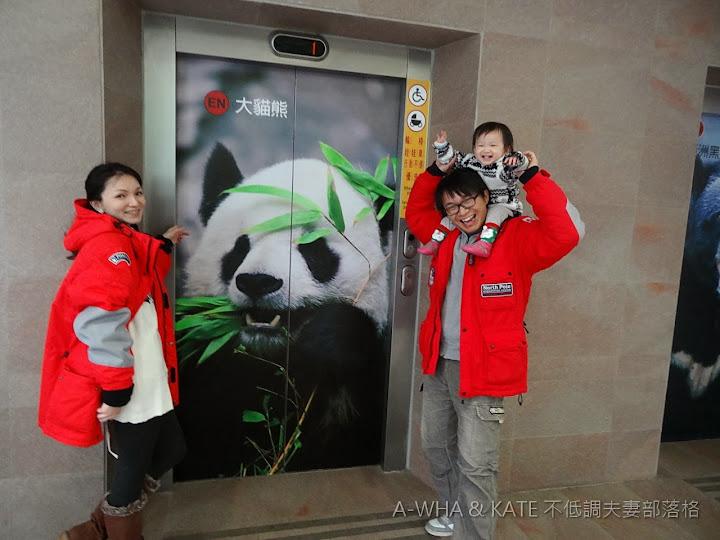 【貓熊入園攻略須知】小布妹第一次參觀圓仔~台北市立木柵動物園